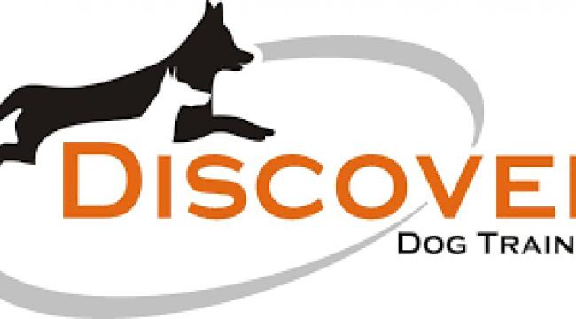 Köpeğinizdeki değişimi keşfedin